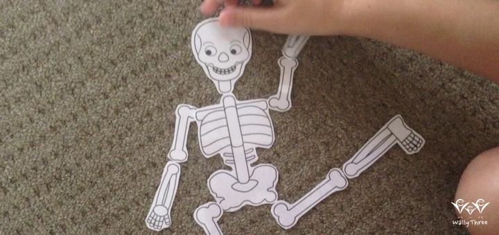 Skelabone